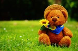 teddy-bear-792273_960_720