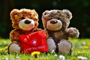 teddy-1361469_960_720